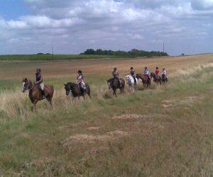 promenade_cheval